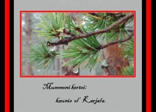 postikortti hälle, jolla on sydämessä Karjala